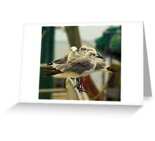 What? I Like This View! Greeting Card