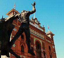 Plaza de toros by bertsimo