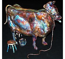 Vaca De Tambo Photographic Print