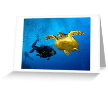 Dancing With Sea Turtles Greeting Card