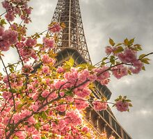 Blossoming Tower by Michael Matthews