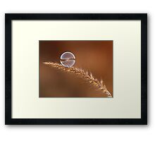 Ephemeral Framed Print
