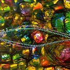 fisheye by doreen connors