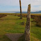 Brodgar Stones in the Evening by kalaryder