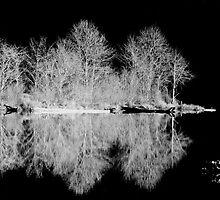 Winter at the Lake by TeresaB