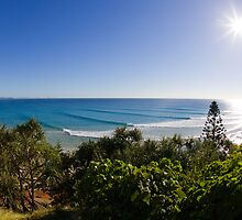 Snapper Rocks by Matt Robertson