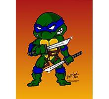 Leonardo Teenage Mutant Ninja Turtles Photographic Print