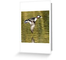 Wing Light Greeting Card