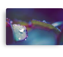 Perfect Droplet Canvas Print