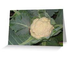 Cauliflower Greeting Card