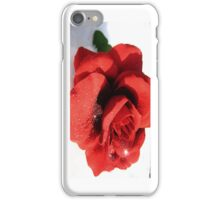 Glitter, Rose, and Snow - iCase iPhone Case/Skin