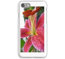 Pink Day Lilly Macro - iCase iPhone Case/Skin