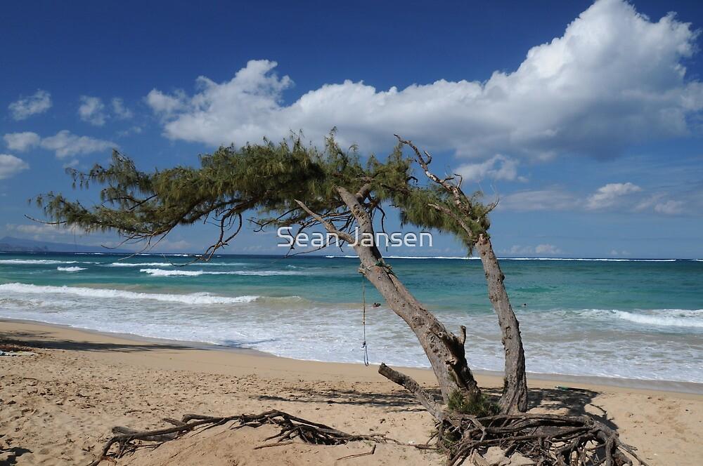 Maui Magic by Sean Jansen
