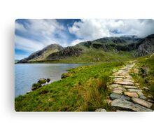 Taking the Rocky Path Canvas Print