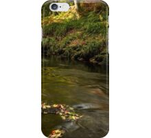 West Beck, Gothland, North Yorkshire iPhone Case/Skin