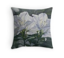 Mt Cootha Afternoon Throw Pillow