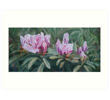Blossoming Trio Art Print