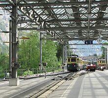 Train by alsikora