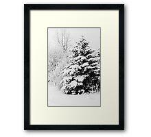 Snowy Framed Print