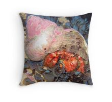 MY HOME - HERMIT CRAB Throw Pillow