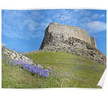 Lindisfarne Castle in Summer, Northumberland Poster