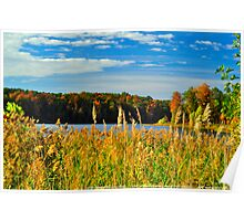 Lake View 2 Poster