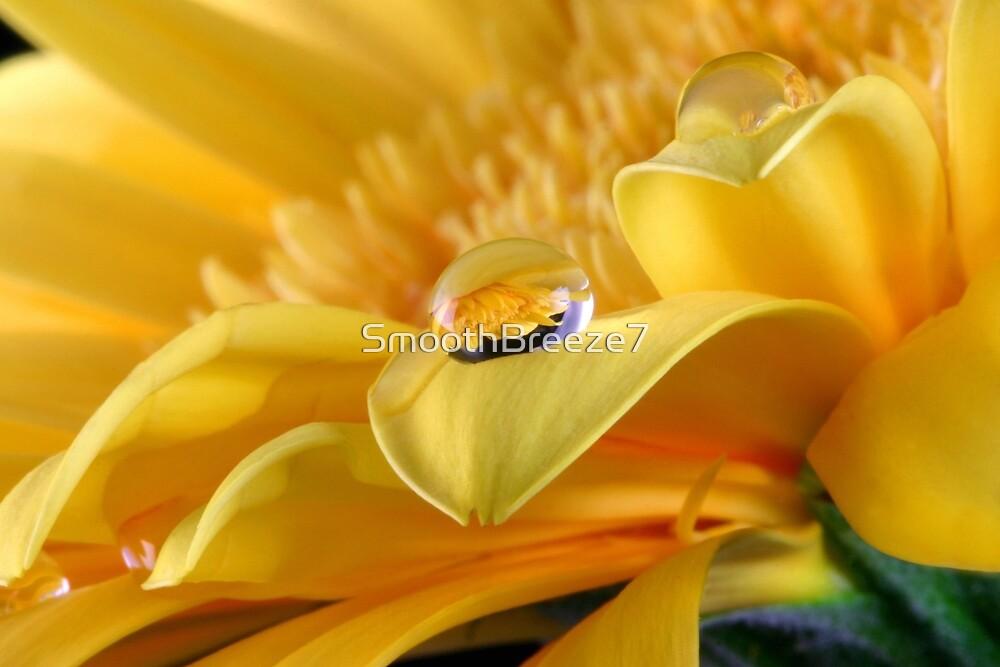 Gerbera's Drop of Life by SmoothBreeze7