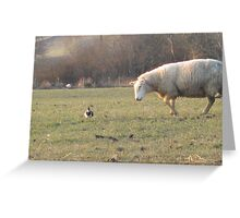 Ewe don't look like a sheep!! Greeting Card