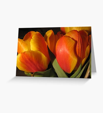 Light and Colour Greeting Card