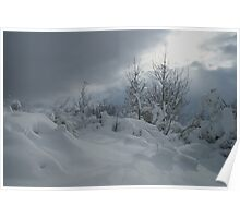Covered in Snow Poster