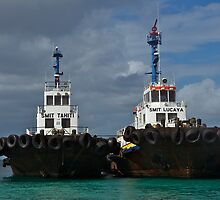 Tug Boats  by dcdigital