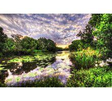 Swamp Fire Photographic Print