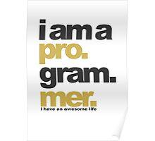 I am a programmer Poster