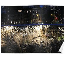 High Line at Night, New York's Elevated Park and Garden  Poster