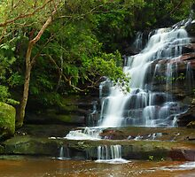 Upper Somersby Falls, New South Wales, Australia by Michael Boniwell