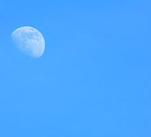 Afternoon Moon - 4:30pm, Feb 2nd, 2012 - #1 by Scott Mitchell