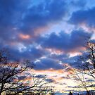 Winter Sky 2 by G.T.S Photos