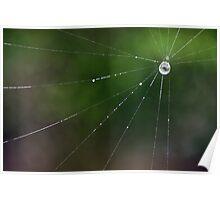 Web Jewels Poster