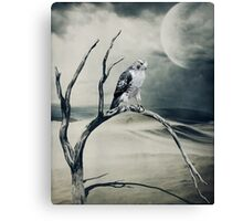 Dust Bowl... Canvas Print