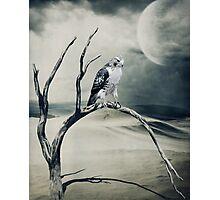 Dust Bowl... Photographic Print