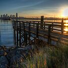 Dawn at the Dock by Mari  Wirta