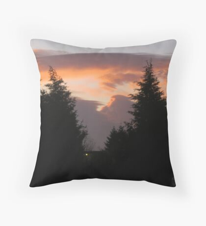 Today I woke up to a beautiful day 1 Throw Pillow