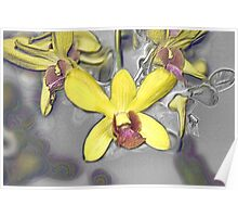 Oil Slicked Orchids Poster