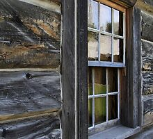 A Window in the Fort by Alyce Taylor