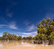 One Perfect Day - Menindee, NSW by Malcolm Katon