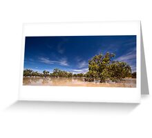 One Perfect Day - Menindee, NSW Greeting Card