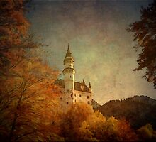 Castle Neuschwanstein   Bavaria  Germany by Marie Luise  Strohmenger