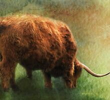 Grazing by Carol Bleasdale