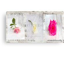 My rose garden Canvas Print