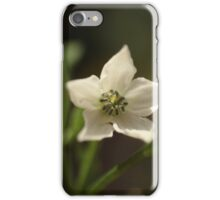 Five Points Of PEace iPhone Case/Skin